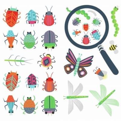 roommates muurstickers insecten vinyl 30 stuks 337671 1574424450